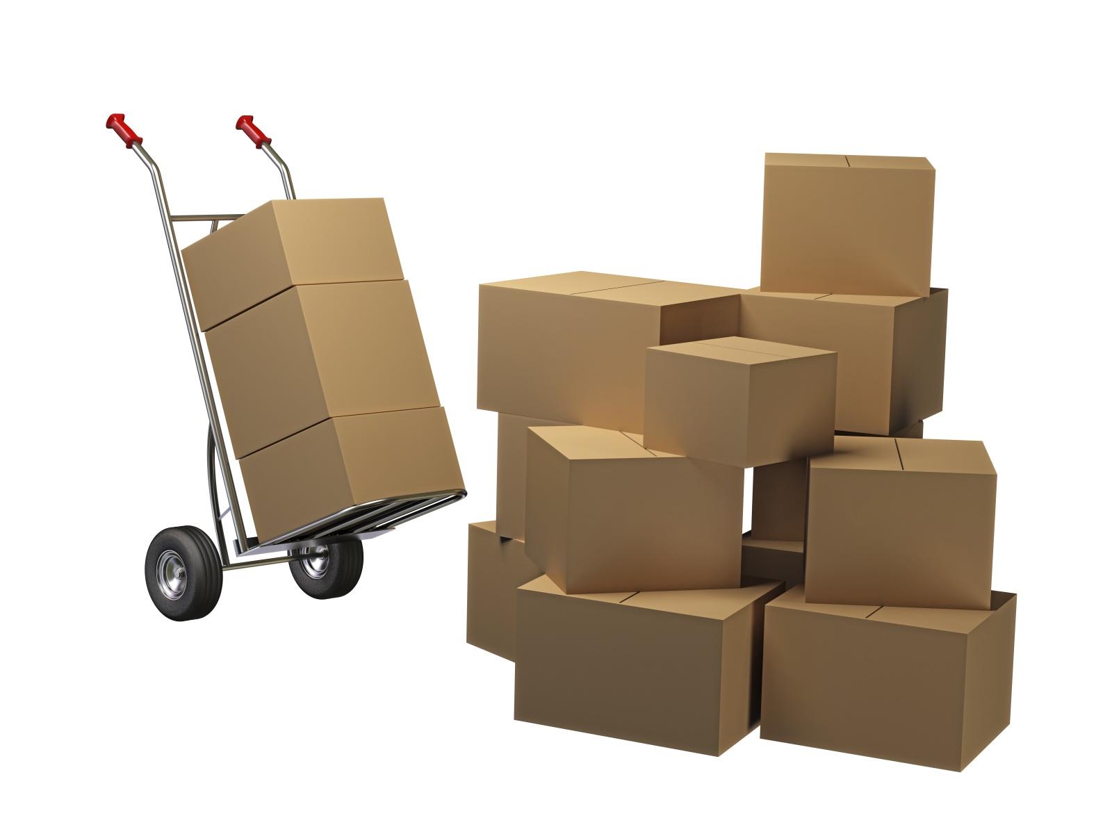 Mencari Supplier Kertas untuk Sertifikat - Panduan Memilih Kertas untuk Sertifikat dan Piagam Penghargaan