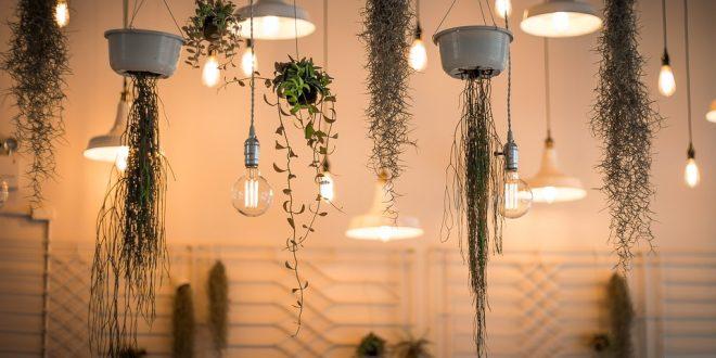 Lampu Hias - Cara Memilih Lampu Hias Terbaik untuk Dekorasi Indoor dan Outdoor - pixabay.com