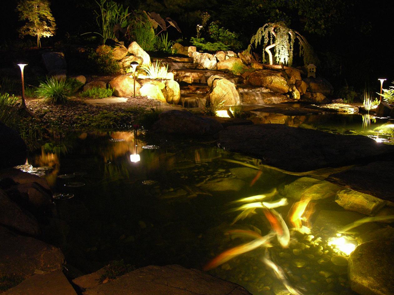 Pond light - Tips Memilih Desain Lampu Taman Cantik untuk Kantor dan Taman Kota - oodearthwatergardens.com